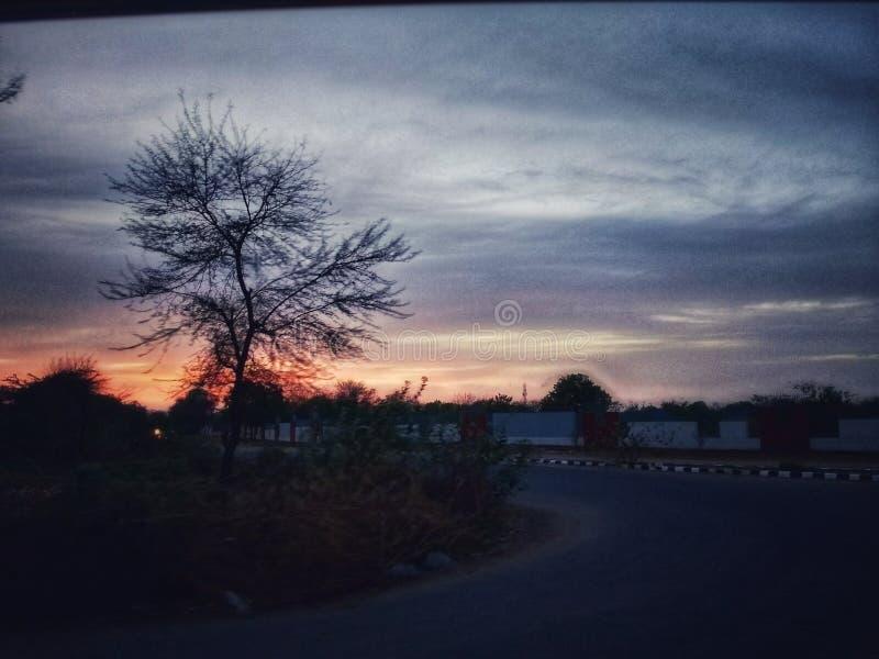 Puesta del sol en nube con el movimiento del árbol imágenes de archivo libres de regalías