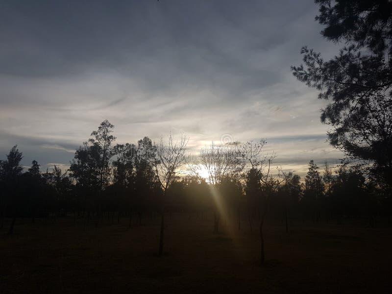Puesta del sol en parque fotos de archivo