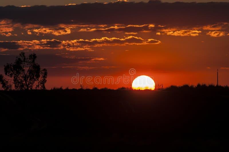 Puesta del sol en primero plano de la hierba imágenes de archivo libres de regalías