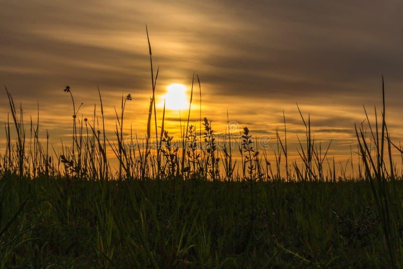 Puesta del sol en un ?rea minera convertida adentro a un paisaje asombroso en Genk, B?lgica foto de archivo libre de regalías