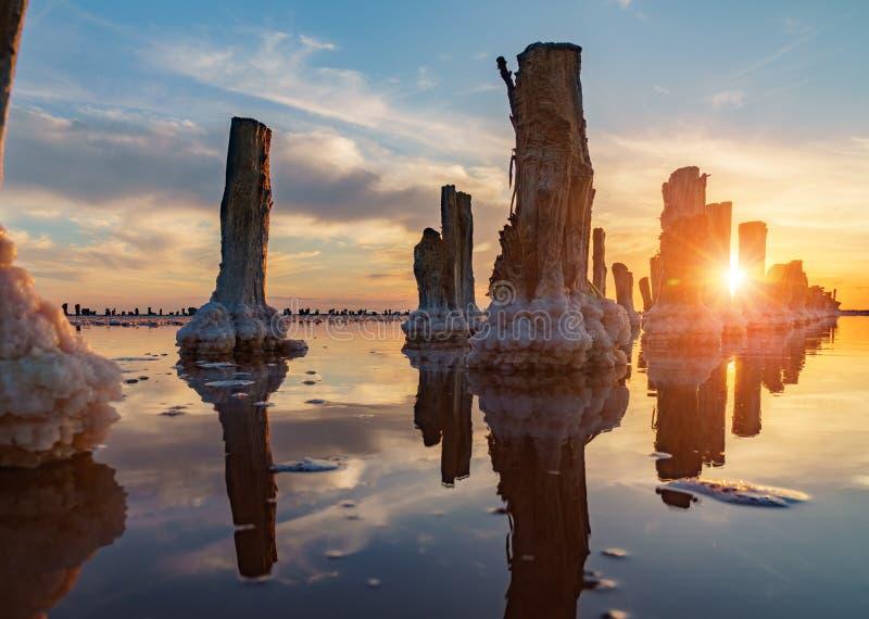Puesta del sol en un lago de sal rosado, una mina anterior para la extracción de la sal rosada fila de las clavijas de madera dem imagenes de archivo