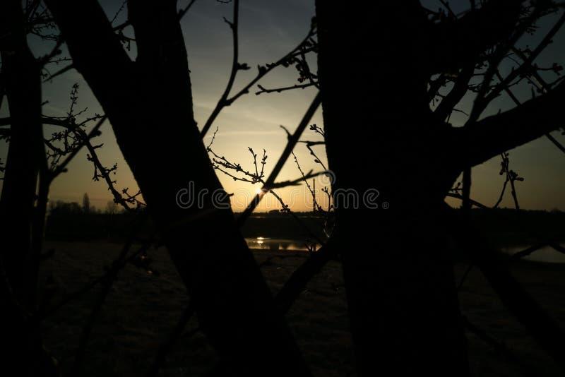 Puesta del sol en un mar en Alemania imagen de archivo