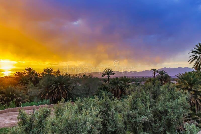 Puesta del sol en un oasis imágenes de archivo libres de regalías