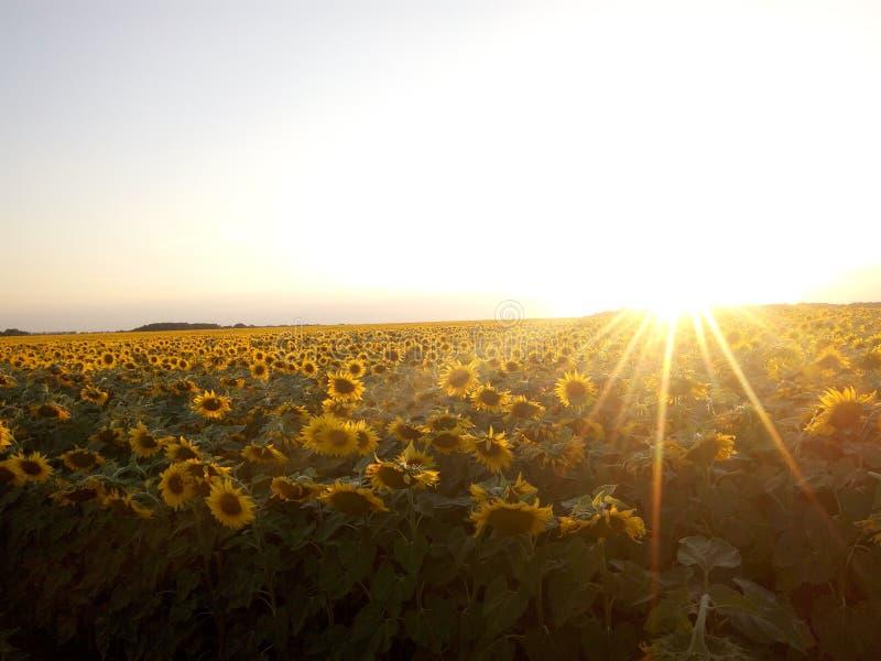 Puesta del sol encima imagenes de archivo