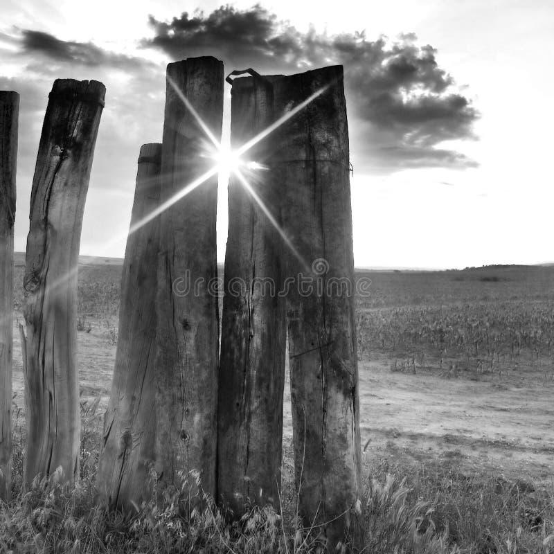 Puesta del sol entre las tarjetas de madera imagen de archivo libre de regalías