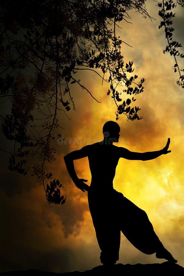 Puesta del sol espiritual de los artes marciales imágenes de archivo libres de regalías