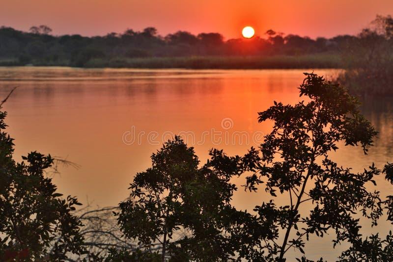 Puesta del sol excepcional en el río en la reserva de Mana Pools en Zimbabwe fotos de archivo