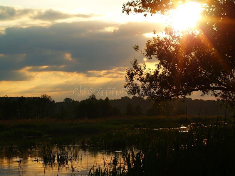 Puesta del sol fenomenal foto de archivo libre de regalías