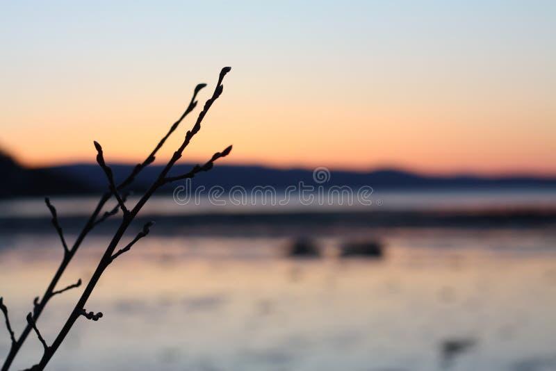Puesta del sol fría en primavera cerca de Trondheimsfjorden imágenes de archivo libres de regalías