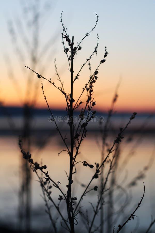 Puesta del sol fría en primavera por Trondheimsfjorden imagen de archivo libre de regalías