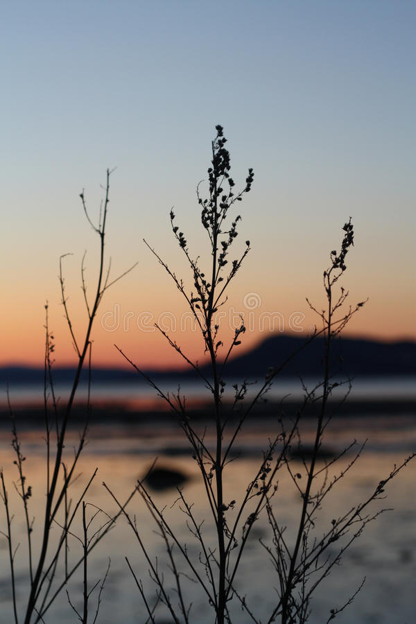 Puesta del sol fría en primavera por Trondheimsfjorden imagen de archivo