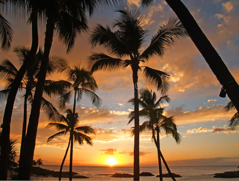 Puesta del sol hawaiana) ct 2010 fotos de archivo libres de regalías