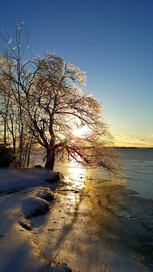 Puesta del sol helada fotos de archivo libres de regalías