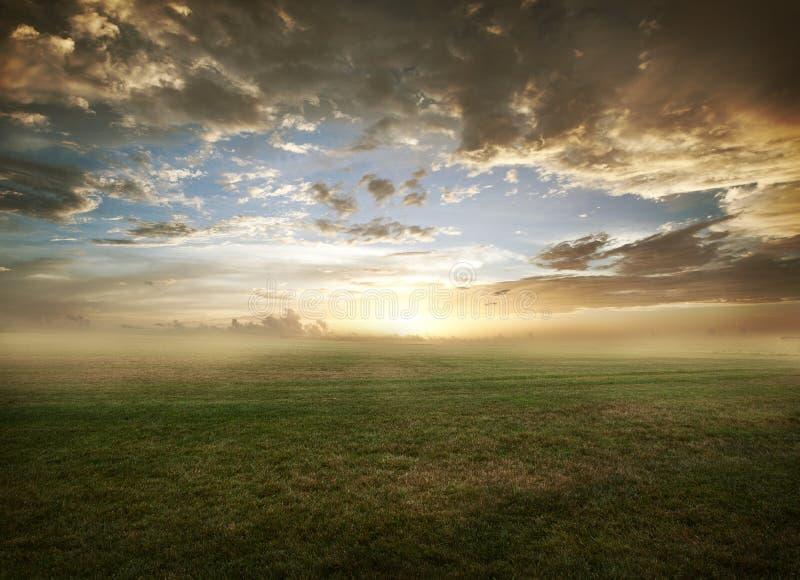 Puesta del sol herbosa del campo fotografía de archivo libre de regalías
