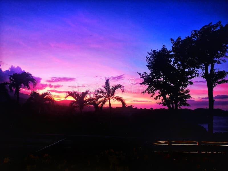 Puesta del sol hermosa del colorfull con palmtrees imagen de archivo libre de regalías