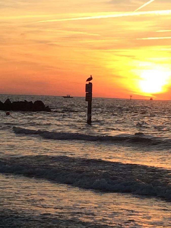 Puesta del sol hermosa de la playa de Clearwater foto de archivo