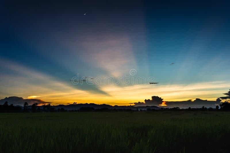 Puesta del sol hermosa de la salida del sol del paisaje del campo de arroz fotografía de archivo libre de regalías