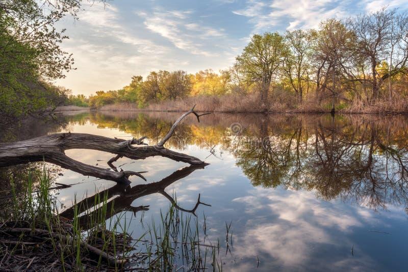Puesta del sol hermosa en el río en bosque con la reflexión del cielo fotografía de archivo libre de regalías