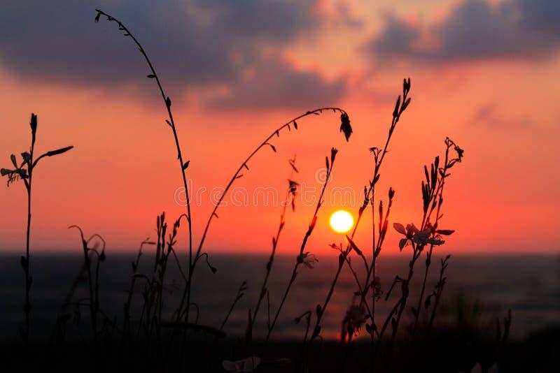 Puesta del sol hermosa en la costa foto de archivo