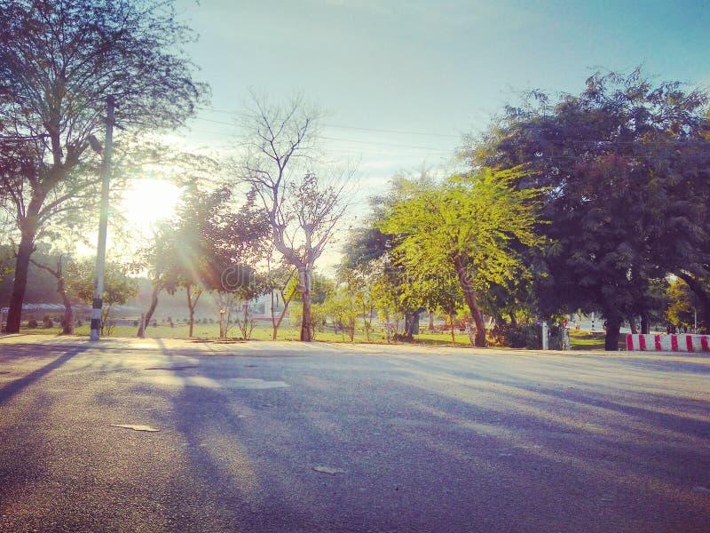 Puesta del sol hermosa en la India - los árboles y el sol está pareciendo hermosos foto de archivo