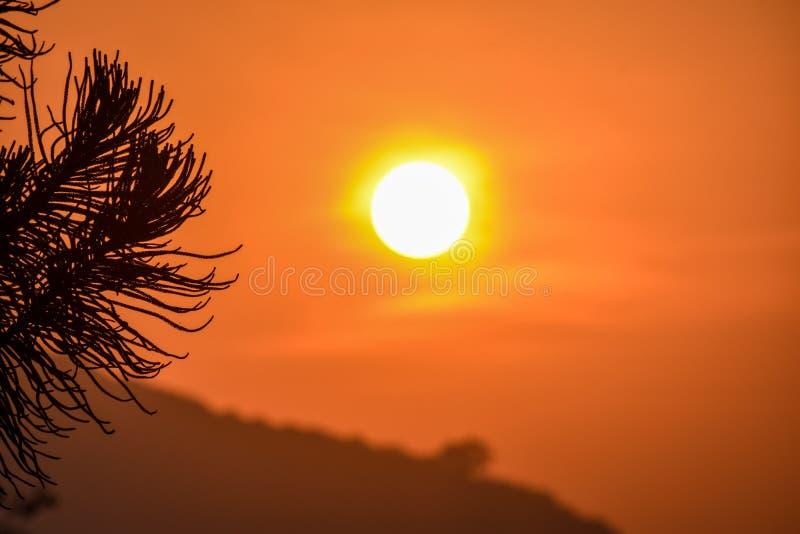 Puesta del sol hermosa en odisha foto de archivo libre de regalías