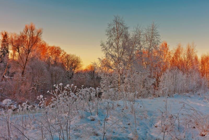 Puesta del sol hermosa del invierno foto de archivo