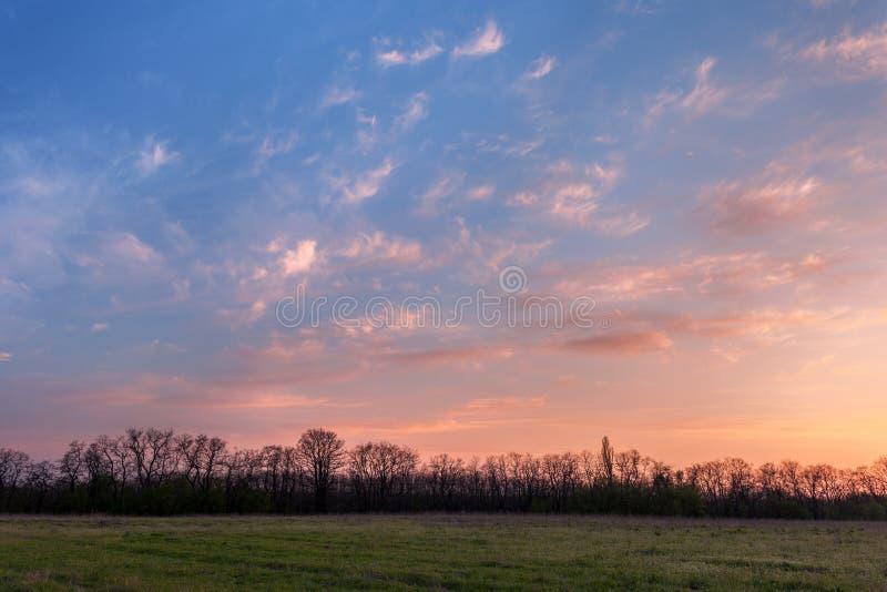 Puesta del sol hermosa Paisaje de la primavera con los árboles, el cielo azul y el clou fotos de archivo