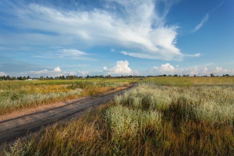 Puesta del sol hermosa Paisaje del verano con el cielo azul, nubes, camino imagen de archivo