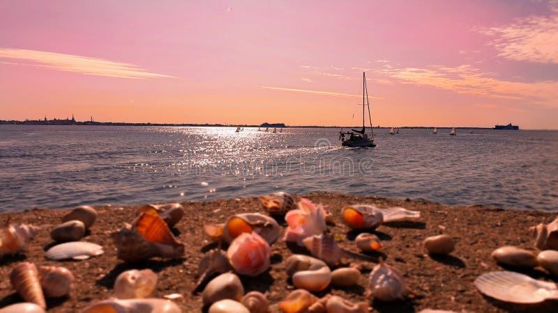 Puesta del sol hermosa romántica en la concha marina hermosa del mar Báltico del barco de mar en el cielo del mar de la roca en f fotos de archivo
