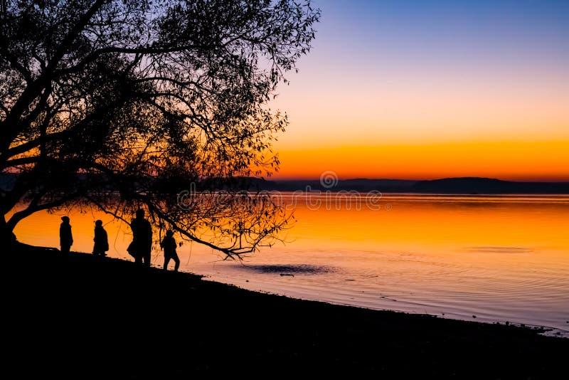Puesta del sol increíble, brillante sobre el agua contra la perspectiva de la cual la silueta de un árbol grande imagen de archivo