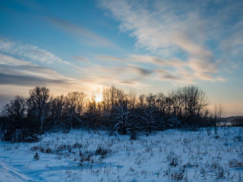 Puesta del sol del invierno sobre el campo y el bosque con las nubes, Novosibirsk, Rusia fotografía de archivo libre de regalías