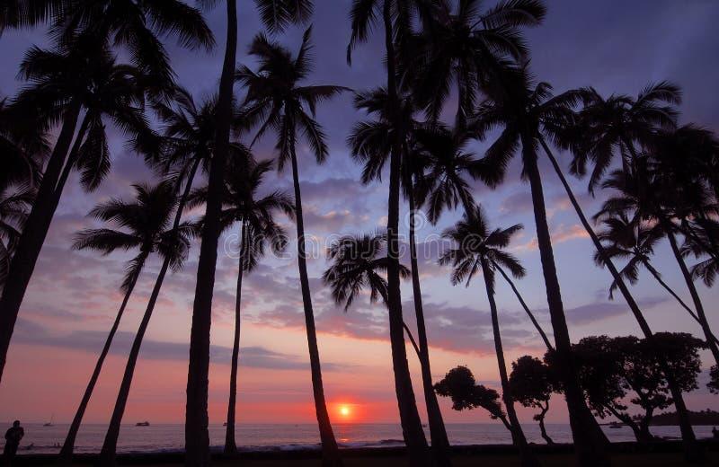 Puesta del sol, Kona, Hawaii imagenes de archivo