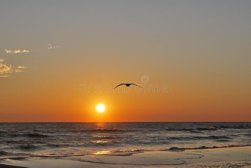 Puesta del sol la Florida Pan Handle de la playa imagen de archivo