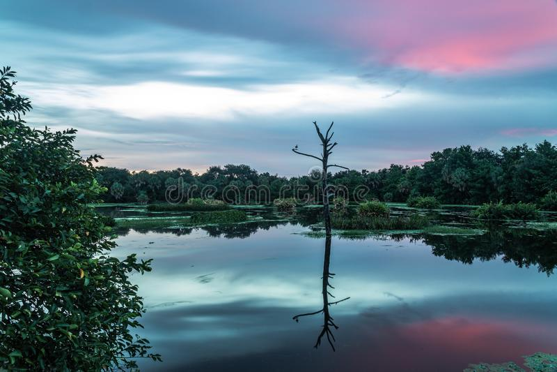 Puesta del sol larga de la exposición de la reserva natural de la Florida foto de archivo libre de regalías