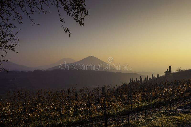 Puesta del sol media del invierno con niebla ligera imagen de archivo libre de regalías
