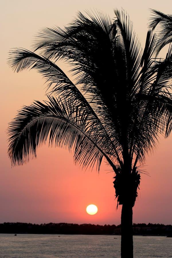 Puesta del sol mexicana fotos de archivo libres de regalías