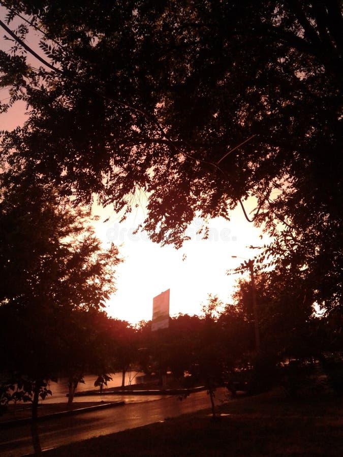 Puesta del sol, ningún filtro imágenes de archivo libres de regalías