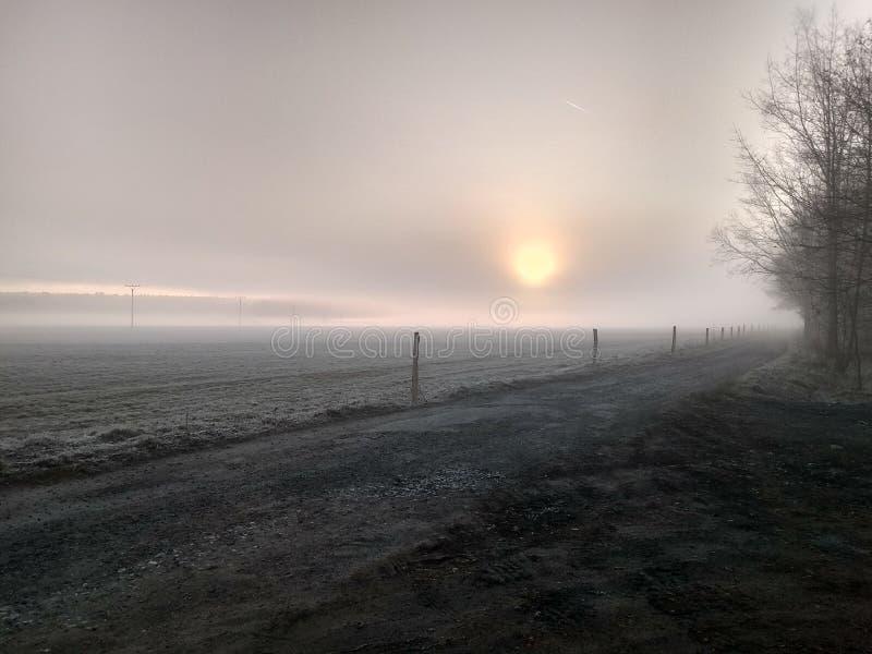 Puesta del sol nublada sobre el prado fotos de archivo libres de regalías