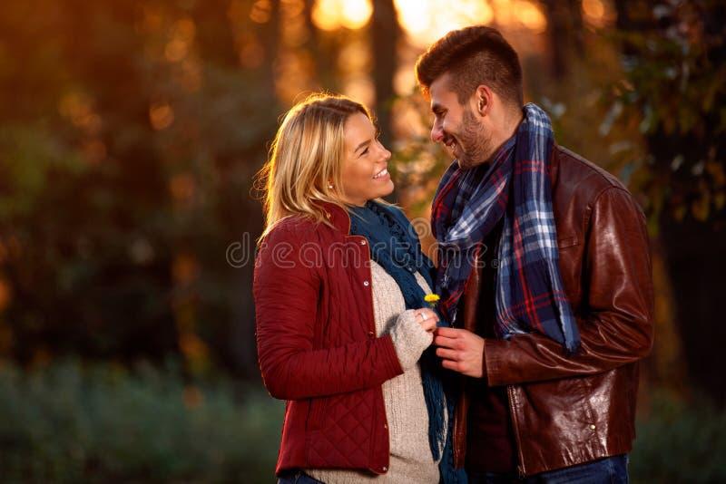 Puesta del sol del otoño en amantes románticos del parque imagenes de archivo