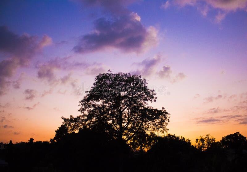 Puesta del sol púrpura imagenes de archivo