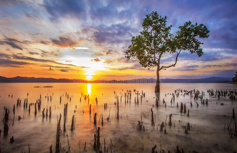 Puesta del sol pacífica fotografía de archivo libre de regalías