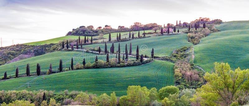 Puesta del sol panorámica de la colina famosa de cipreses en Toscana, Ital imagenes de archivo