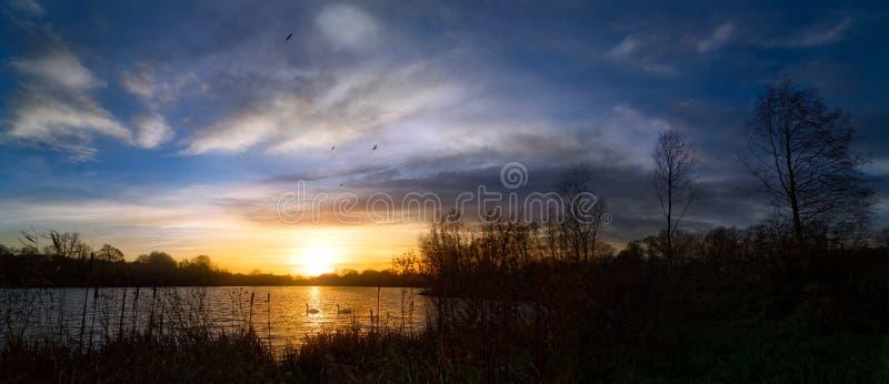 Puesta del sol panorámica por la orilla del lago con los cisnes fotografía de archivo