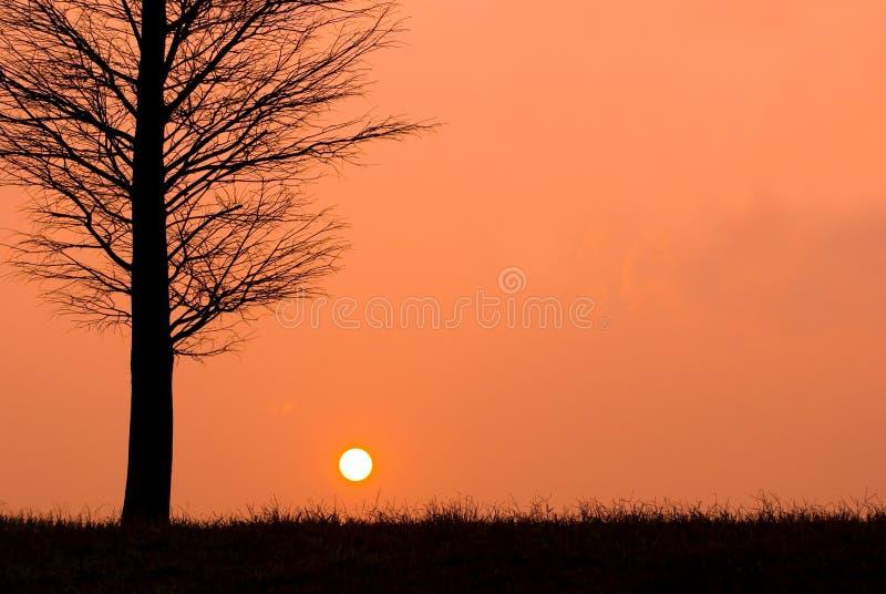Puesta del sol por una tarde pacífica, opinión del campo. imagen de archivo libre de regalías