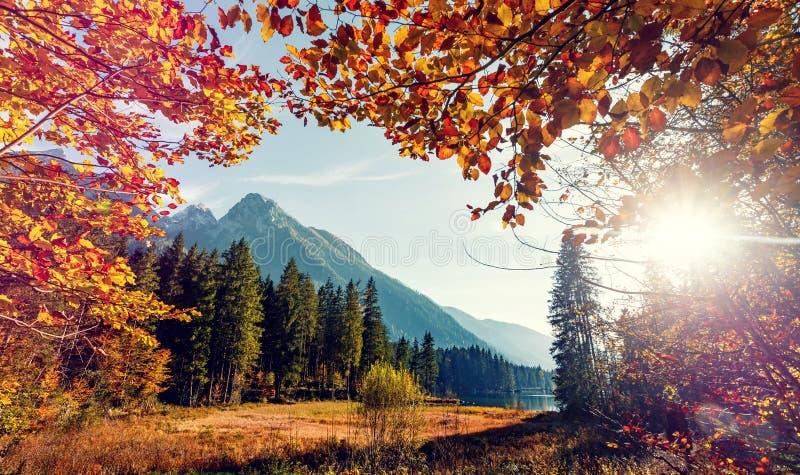 Puesta del sol que sorprende en el lago de la monta?a en bosque fotos de archivo