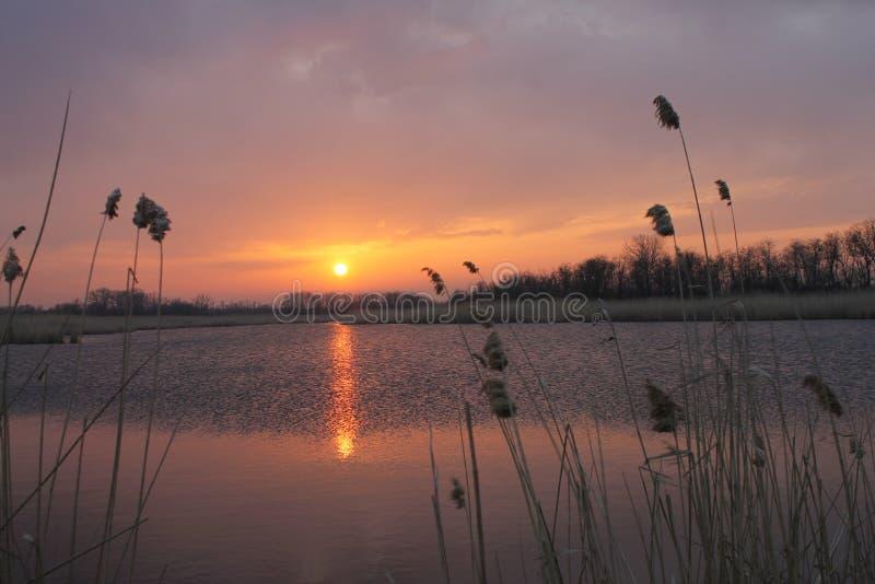 Puesta del sol Región de Krasnodar Río ella foto de archivo libre de regalías