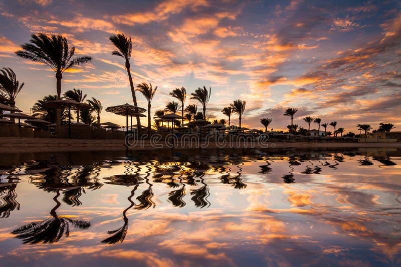 Puesta del sol romántica hermosa sobre una playa arenosa y las palmeras Egipto Hurghada imagen de archivo