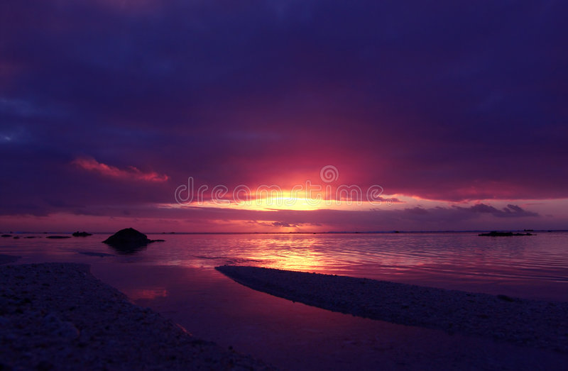 Puesta del sol rosada tropical imagenes de archivo