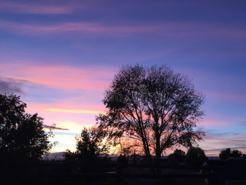 Puesta del sol rural del rancho del país vinícola con los árboles y las nubes fotos de archivo