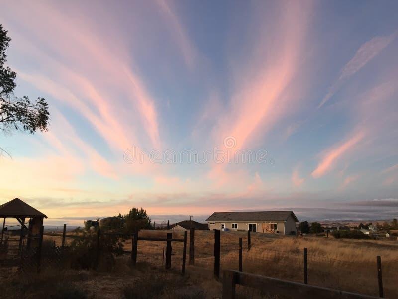 Puesta del sol rural del rancho del país vinícola con los árboles y las nubes fotografía de archivo libre de regalías